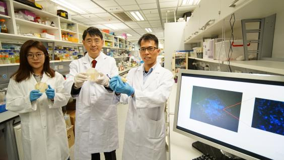 Prof. QIAN Peiyuan (middle) and his team members Dr. LI Yongxin (right) and PhD student WANG Ruojun (left) found 7,000 new marine species by nurturing biofilms in seawater (as shown on microscope and on screen).