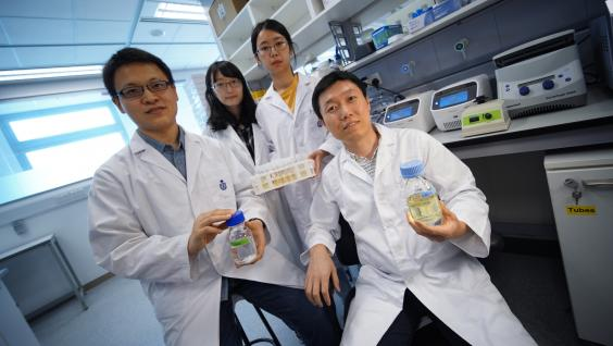 Prof. Zeng Qinglu (front right) and his research team, including first author of the journal paper Liu Riyue (front left).
