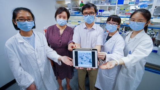 Prof. GUO Yusong (third left), Prof. YAN Yan (second left) and their research team