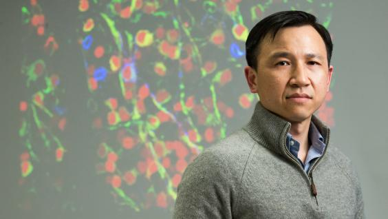 Prof Kai Liu from the Division of Life Science.